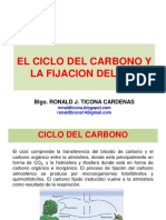 El Ciclo Del Carbono y La Fijacion Del CO2