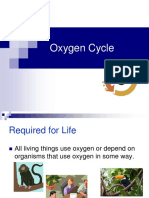 Oxygen Cycle in Environmental.ppt