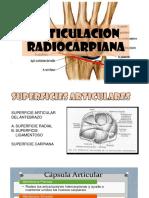Articulacion Radiocarpiana
