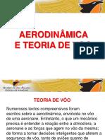 Aerodinamica e Teoria de Voo(1)