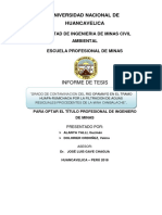 Informe de Tesis Opa Mayo