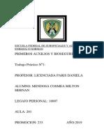 Trabajo Practico N 1 Mendosa Milton aula 201 T.M.docx