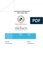 Nielsen SIP Final Report