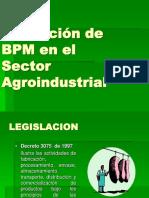 Aplicación de BPM en el Sector  Agroindustrial 1.pdf