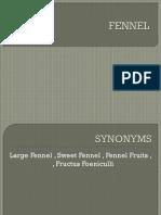 fennel 1.pptx