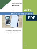 Lucrul individual frecventa redusa 2018-2019.docx
