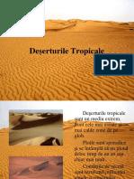 0 Desert Uri Tropical e