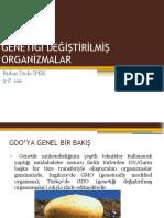 GENETİĞİ DEĞİŞTİRİLMİŞ ORGANİZMALAR (2)