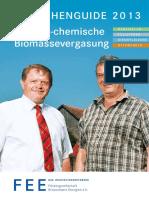 2013 BG Biomassevergasung