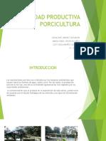 UNIDAD PRODUCTIVA PORCICULTURA (1).pptx