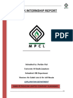 4th week internship report (purkho mal).docx