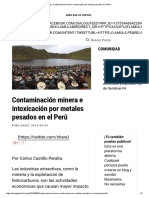 Post_ Contaminación Minera e Intoxicación Por Metales Pesados en El Perú