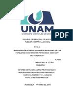 Informe de Practicas Pre Profesionales - Thania Ticona Maquera (3)
