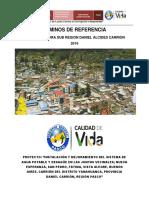 Términos de Referencia Yanahuanca -Snip 2191197