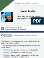 Noise Audits
