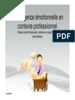 Intelligence Emotionnelle Roebroeck Mode de Compatibilite