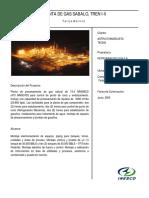 SABALO.docx(ES).pdf