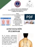 AUSCULTACION PULMONAR