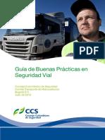 GUIA DE BUENAS PRACTICAS EN SEGURIDAD VIAL