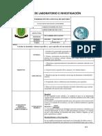 FORMATO-DE-PRACTICAS-DE-INVESTIGACIÓN-Y-LABORATORIO (1).docx