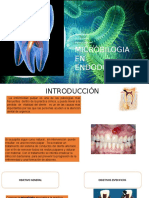 Microbiologia endodontica segun Cohen