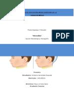 Microcefalia Problema Eje Corr