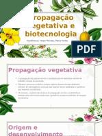 Propagação Vegetativa.pptx 1