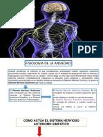Presentación1.Pptx Exposicion Neurofisiologia y La Ansiedad
