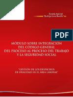 Integracion Del Cgp en El Proceso Laboral