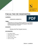 Informe Final de Micro