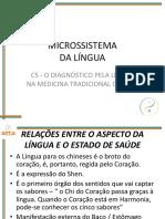 Aula E 05 - Microssistema Da Língua