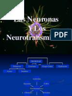 neuronasyneurotransmisores--convertido
