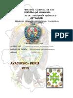 LOS CARBOHIDRATOS composicion.docx
