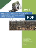 La pesquisas en los delitos ambientales