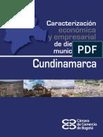Caracterizacion Economica y Empresarial de 19 Municipios