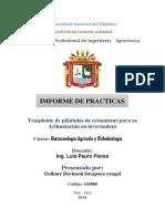 informe de practicas biotecnologia.docx