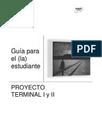 Guia Proyecto 1
