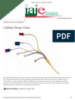 Catéter Swan-Ganz - Publicaciones Científicas
