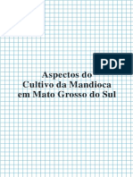 Aspectos Do Cultivo Da Mandioca