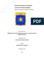 proyecto de metodologia iii.docx