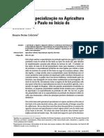 Regiões e especialização na agricultura cafeeira - São Paulo no início do século XX (Colistete 2015) [24p].pdf