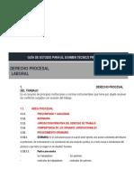 10. Guía de Derecho Procesal Laboral (1)