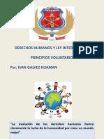PRINCIPIOS VOLUNTARIOS PARA EMPRESAS.pptx