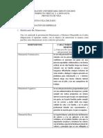 Formato de Análisis (2)