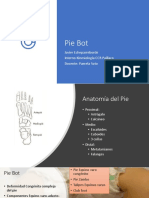 Pie Bot
