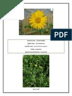 Album on Flowers Ornamental Plants