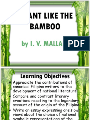 properties of bamboo plant
