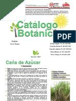 Catalogo Botanico
