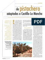 Variedades Pistachero