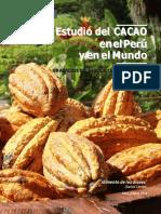 Estudio Cacao Peru Julio 2016 Convertido